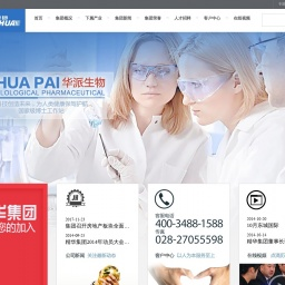www.jinghua-group.cn网站截图