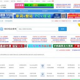 seo.chinaz.com网站截图