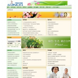 www.donlu.net网站截图