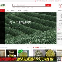 www.maojiantea.com网站截图